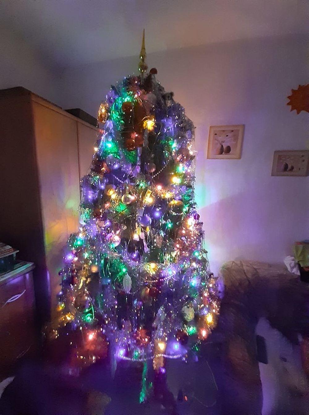 FOTO: Vianočné stromčeky v Žiline - výber fotografií našich čitateľov, foto 48