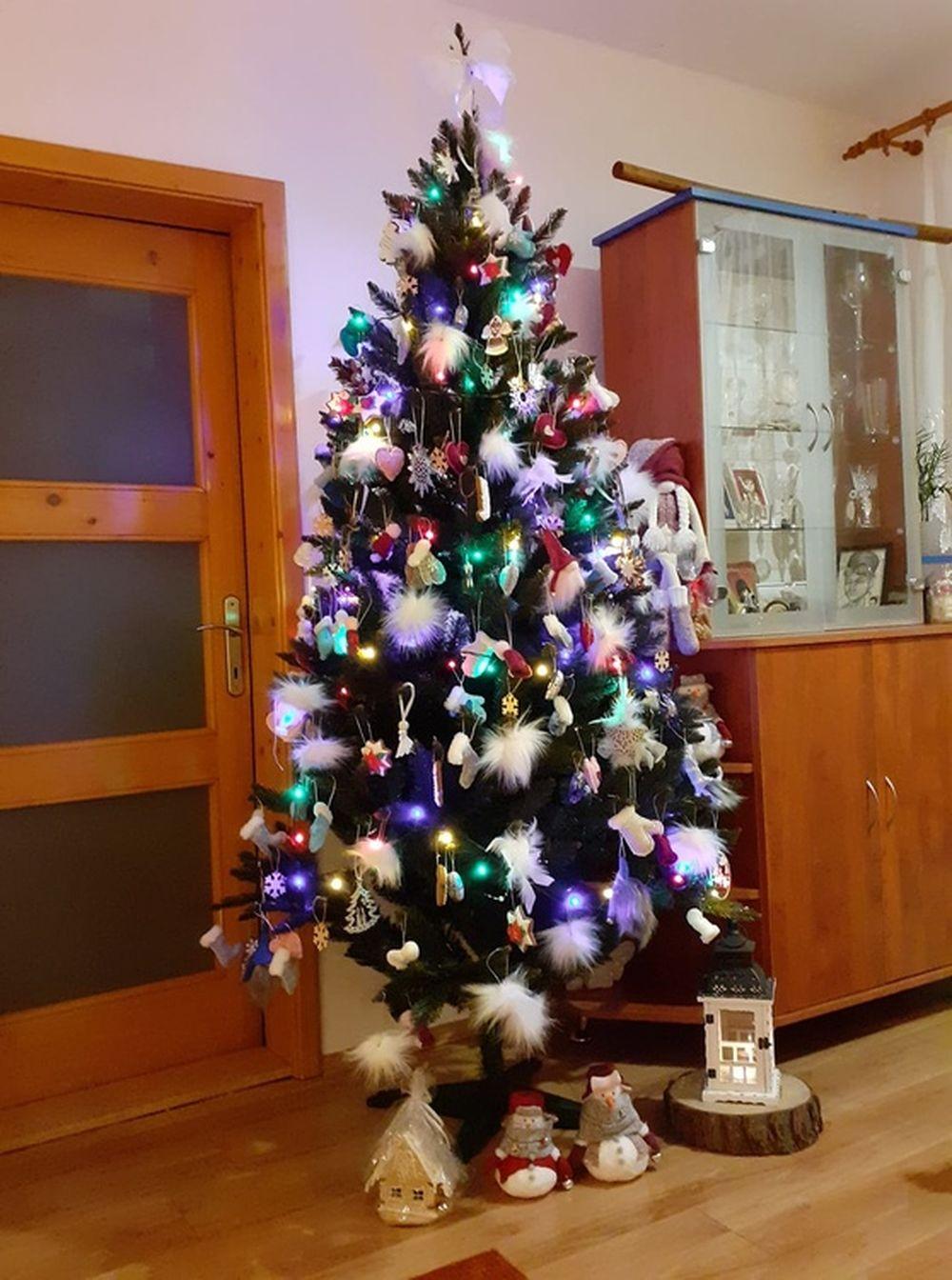 FOTO: Vianočné stromčeky v Žiline - výber fotografií našich čitateľov, foto 49