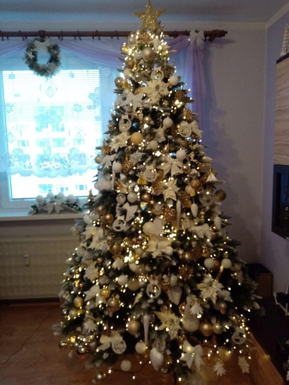 FOTO: Vianočné stromčeky v Žiline - výber fotografií našich čitateľov, foto 50