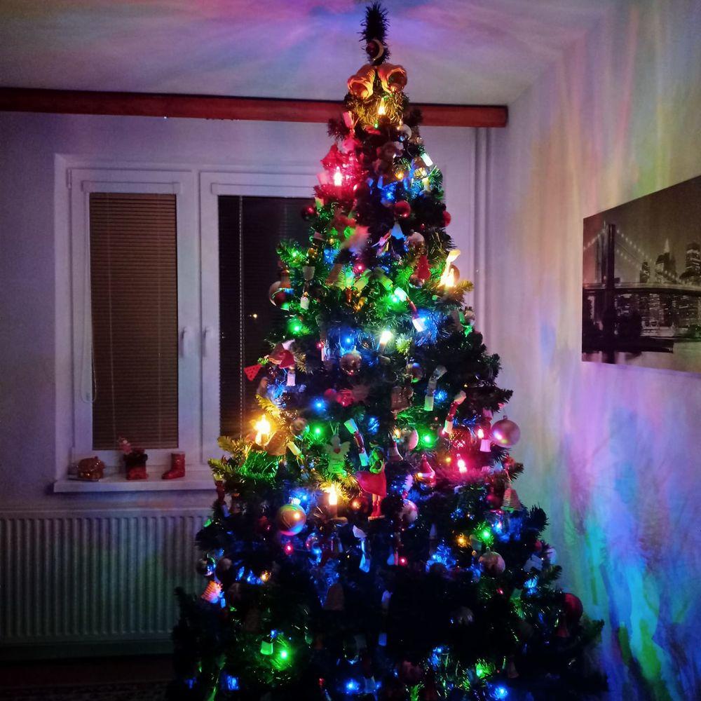 FOTO: Vianočné stromčeky v Žiline - výber fotografií našich čitateľov, foto 51