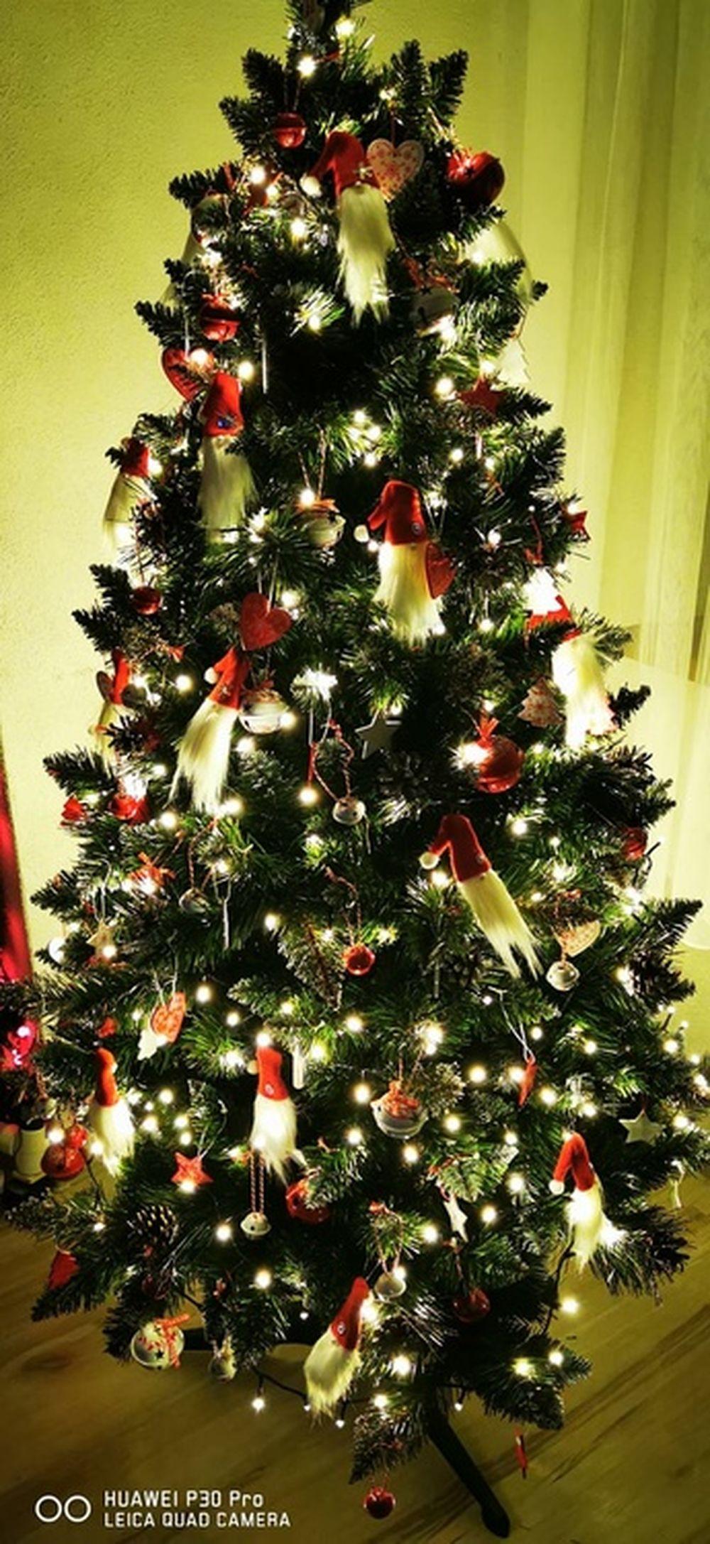 FOTO: Vianočné stromčeky v Žiline - výber fotografií našich čitateľov, foto 55