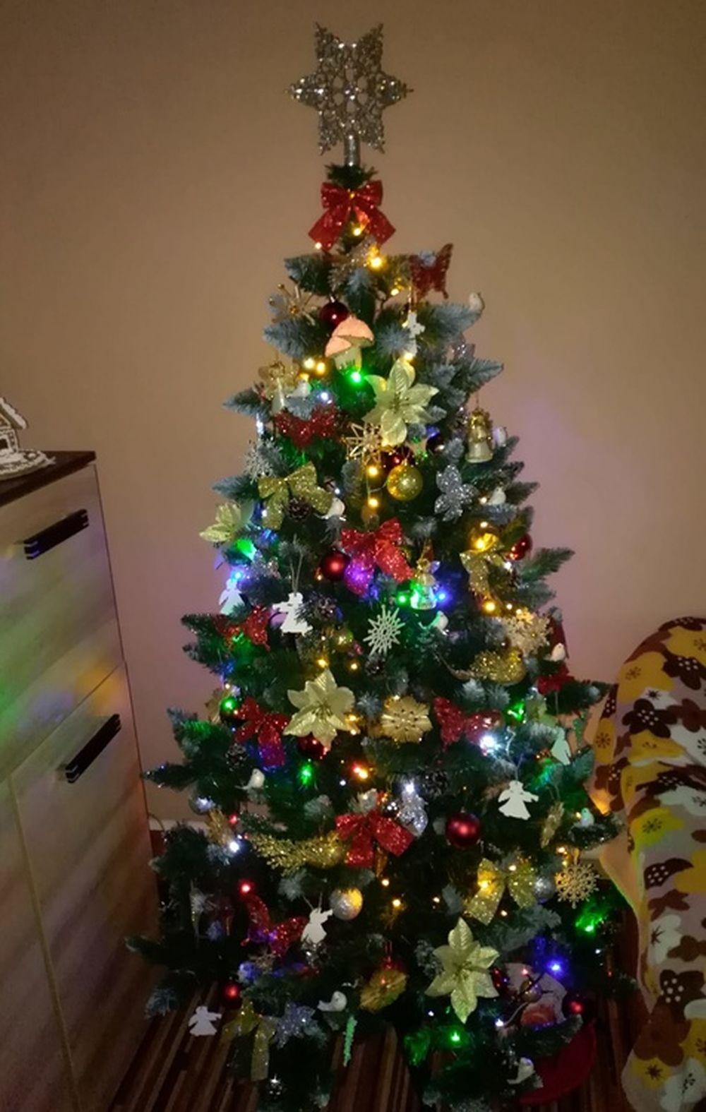 FOTO: Vianočné stromčeky v Žiline - výber fotografií našich čitateľov, foto 56