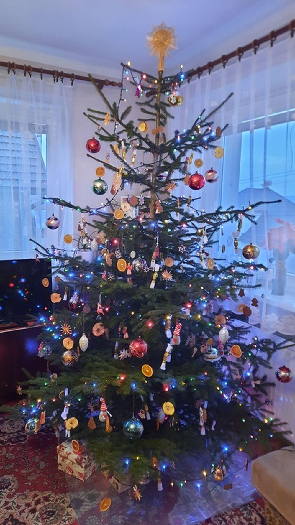 FOTO: Vianočné stromčeky v Žiline - výber fotografií našich čitateľov, foto 60