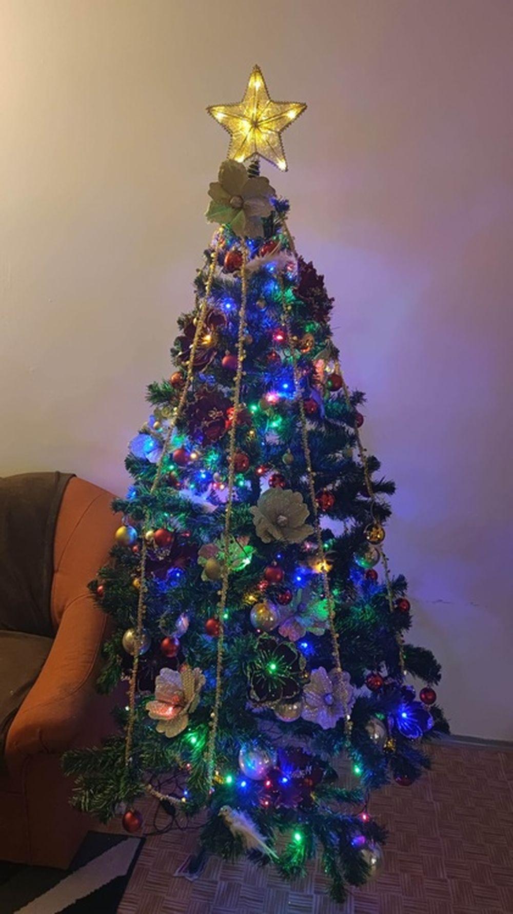 FOTO: Vianočné stromčeky v Žiline - výber fotografií našich čitateľov, foto 63