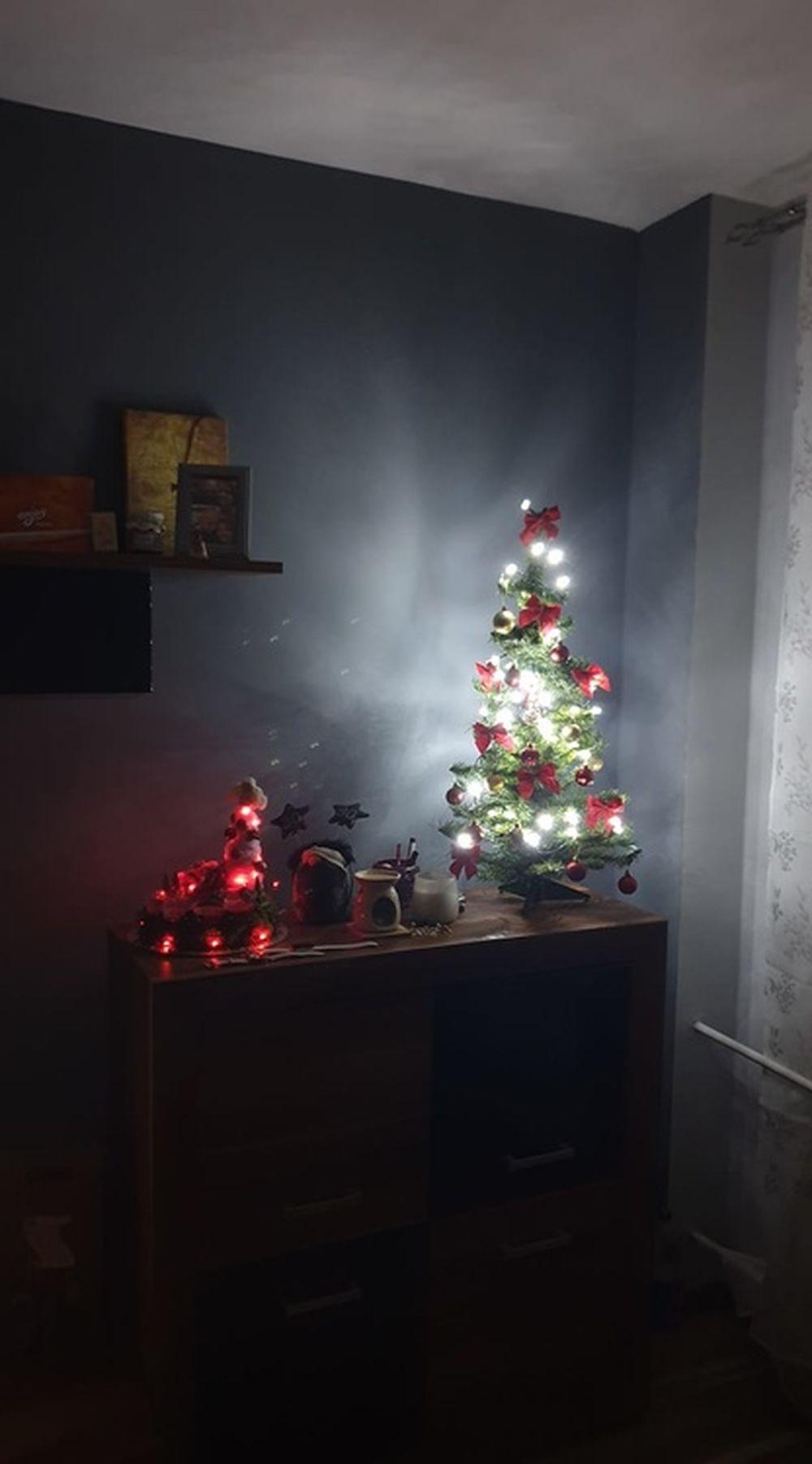 FOTO: Vianočné stromčeky v Žiline - výber fotografií našich čitateľov, foto 64