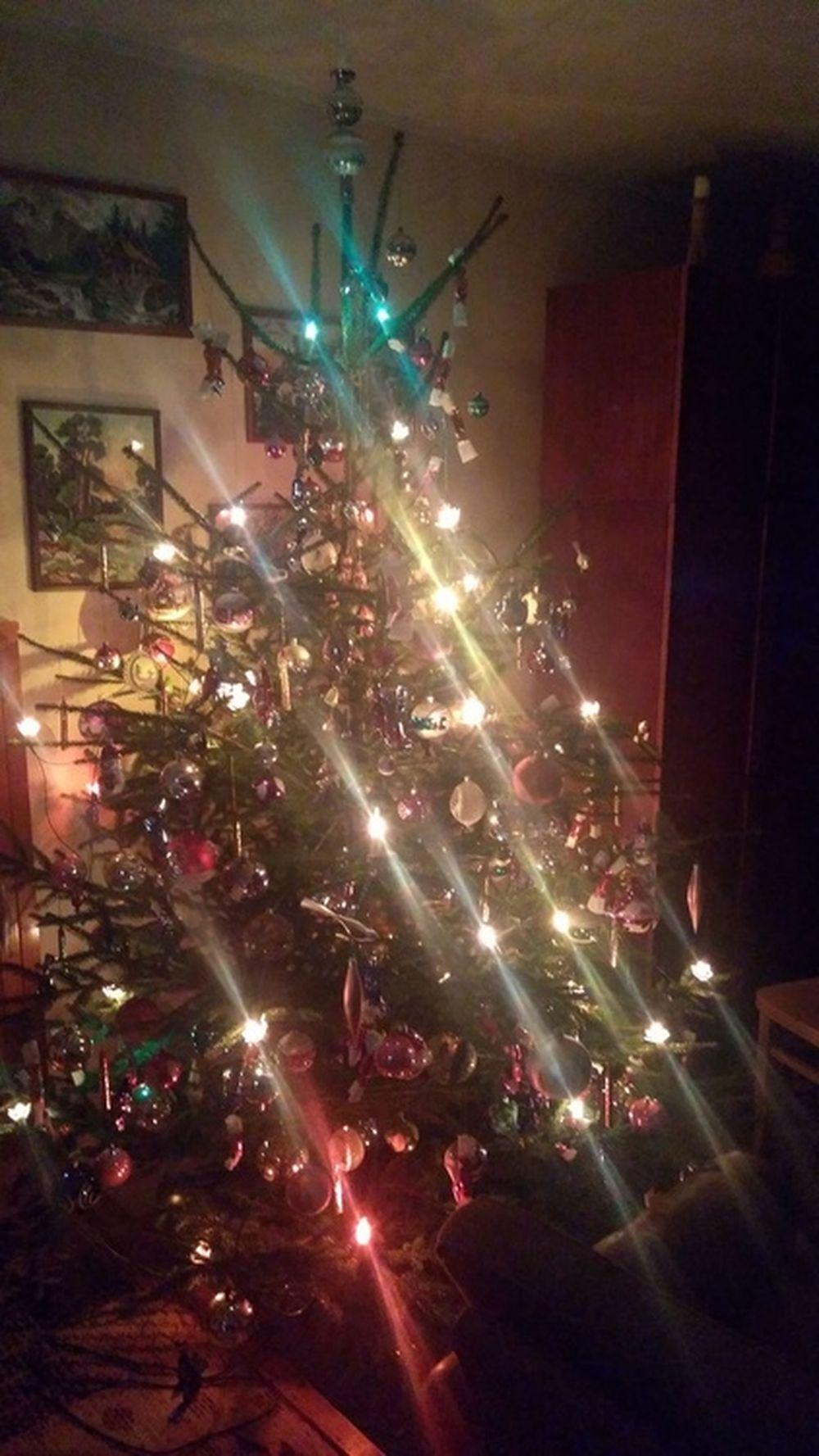 FOTO: Vianočné stromčeky v Žiline - výber fotografií našich čitateľov, foto 67