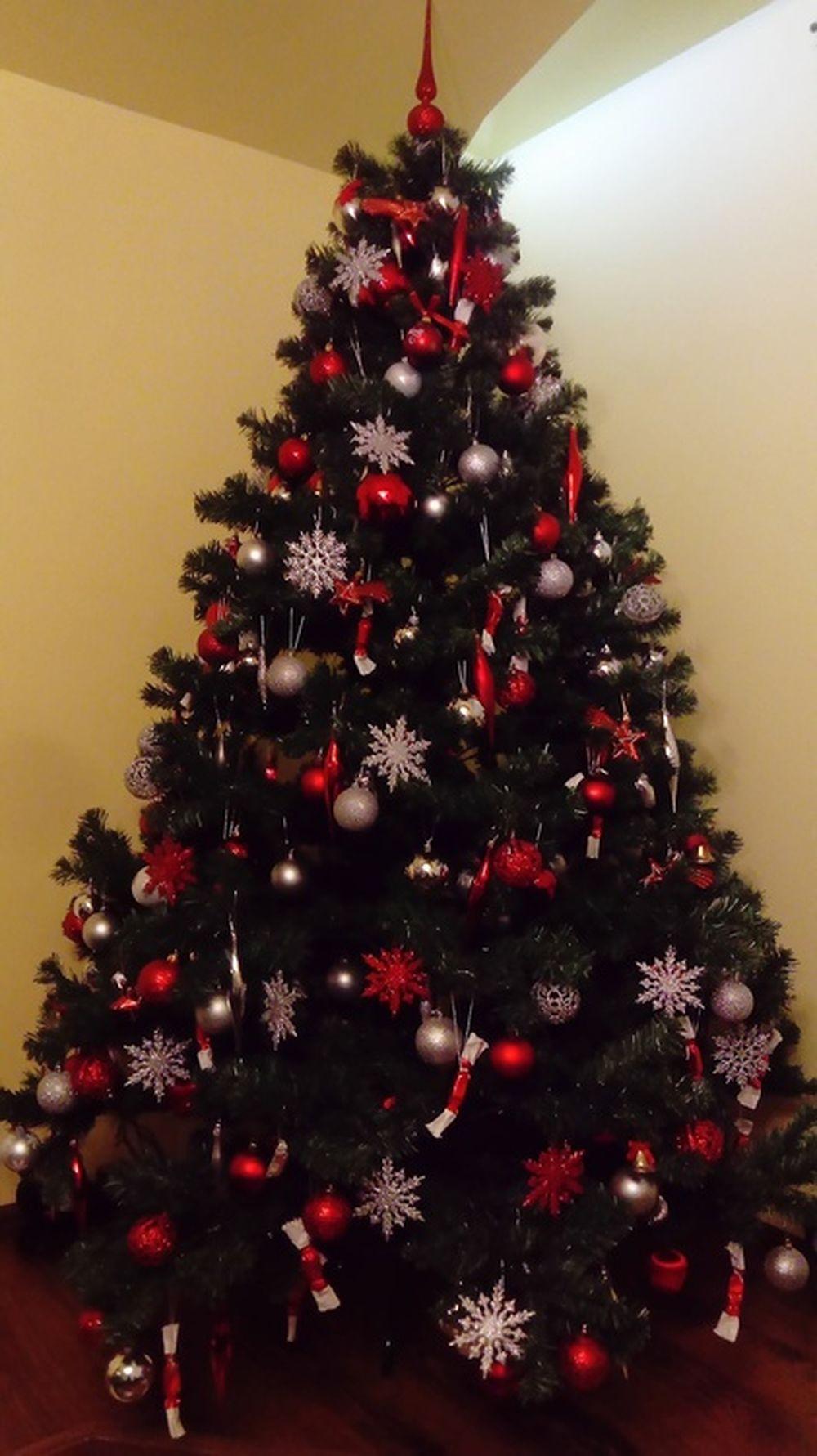 FOTO: Vianočné stromčeky v Žiline - výber fotografií našich čitateľov, foto 68
