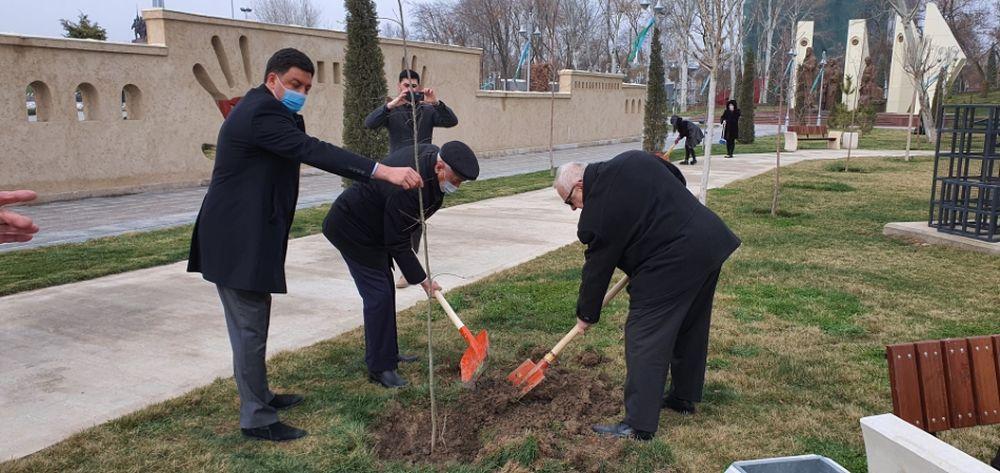 FOTO: Vysadenie Stromu pokoja v Uzbekistane, foto 2