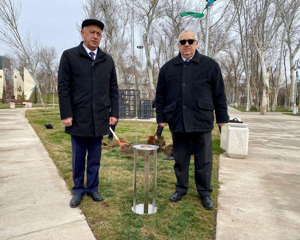 FOTO: Vysadenie Stromu pokoja v Uzbekistane, foto 10