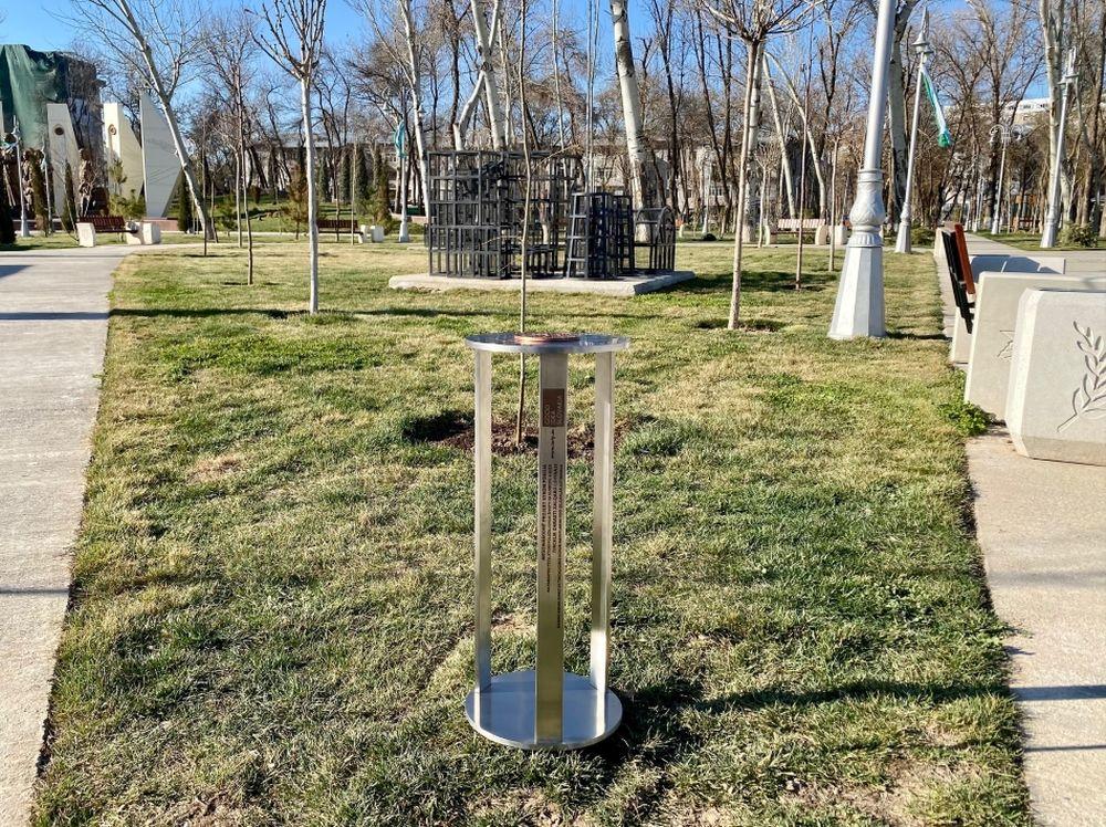 FOTO: Vysadenie Stromu pokoja v Uzbekistane, foto 14