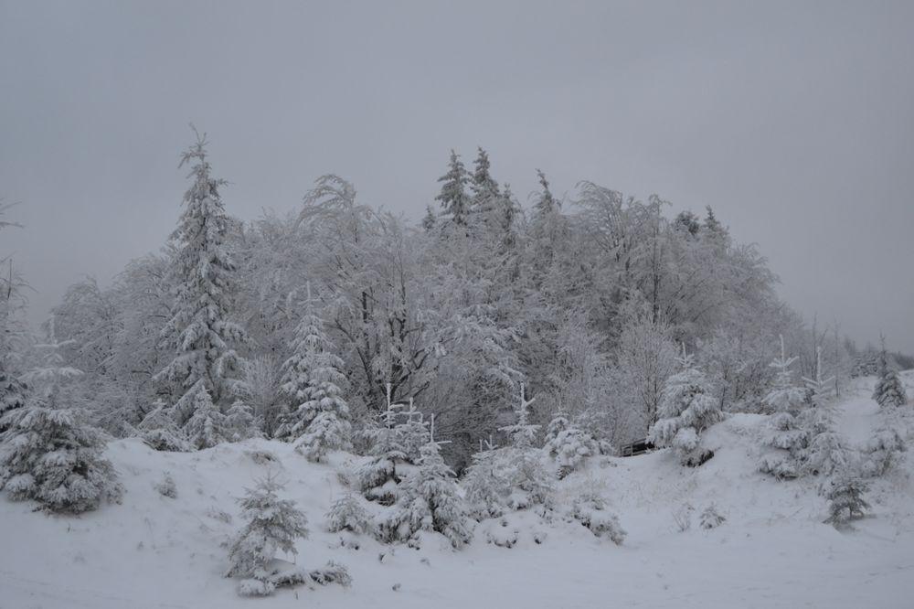 Polom 1.decembra 2013, foto 4