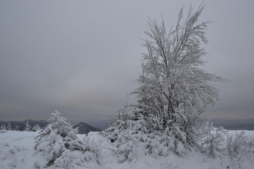 Polom 1.decembra 2013, foto 7