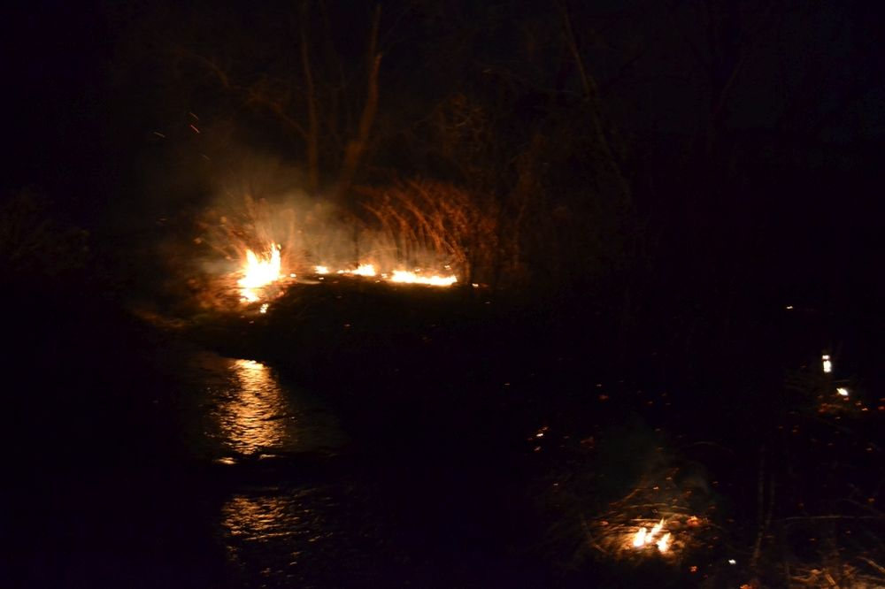 Požiar trávnatých porastov v Trnovom v sobotu 8.marca 2014, foto 1