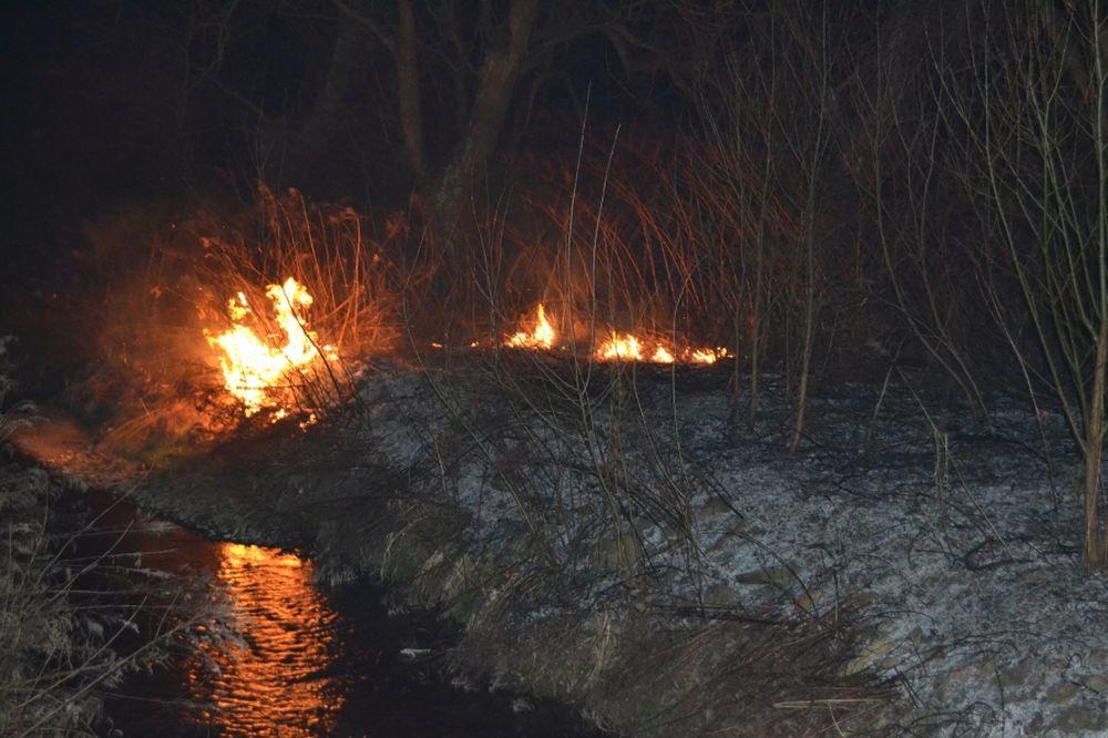 Požiar trávnatých porastov v Trnovom v sobotu 8.marca 2014, foto 2