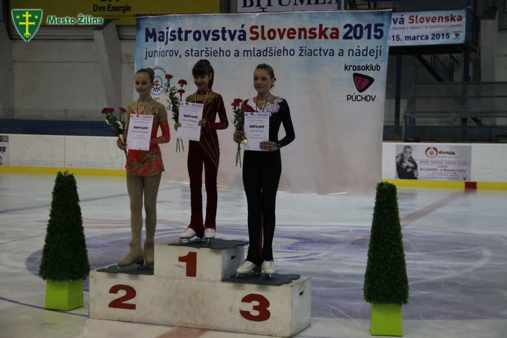 Skate Žilina 2015, foto 1