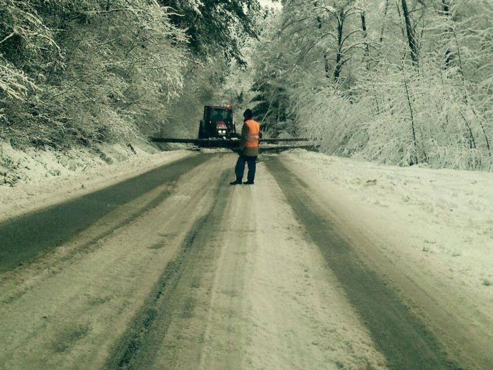 V noci padali stromy na cestu na viacerých miestach v Žiline , foto 8