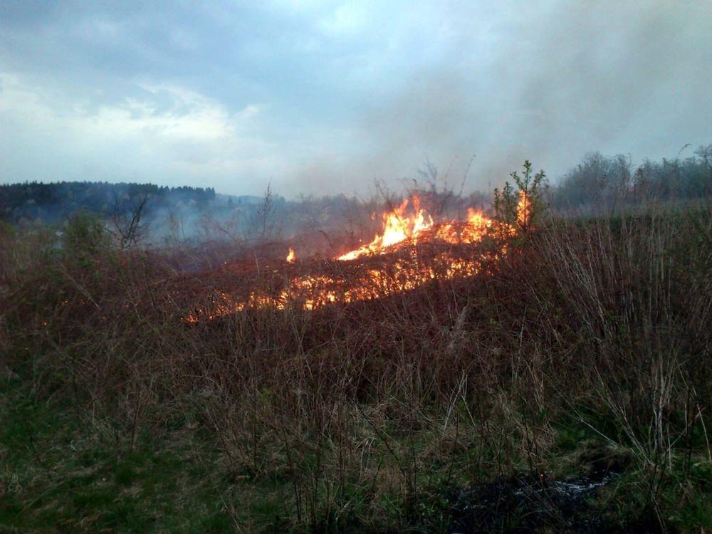V Trnovom opäť horelo, tentokrát zasahovali dobrovoľní hasiči, foto 1