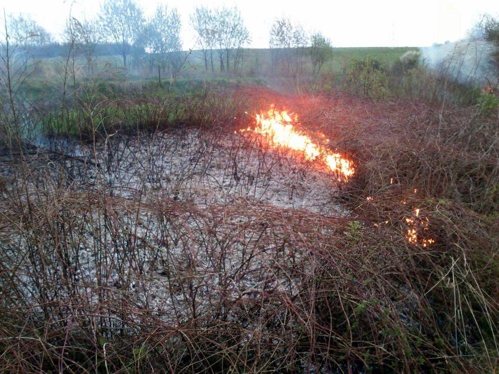 V Trnovom opäť horelo, tentokrát zasahovali dobrovoľní hasiči, foto 2