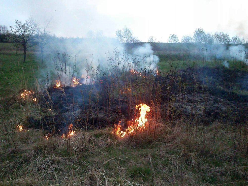 V Trnovom opäť horelo, tentokrát zasahovali dobrovoľní hasiči, foto 3