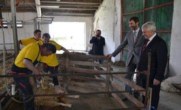 Žilinský kraj podporuje ovčiarstvo na našom území