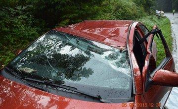 Pri Námestove spadol na auto za jazdy strom