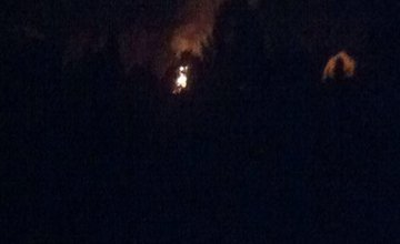 Požiar lesa na Hradisku 11.05.2016