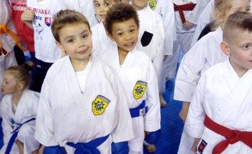 9 medailí z majstrovstiev Slovenska v Karate detí putuje do Žiliny