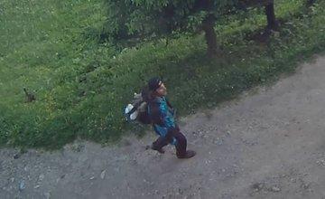 Ukradnutý pes Rúfus z Chaty pod Suchým a páchateľ
