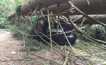 V Rajeckých Tepliciach spadli na autá stromy