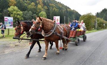 Karlovský gastrofestival už 1. - 2. októbra 2016