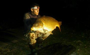 Rybár ulovil kapra vážiaceho takmer 24 kg
