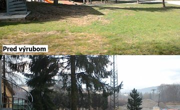 Pri škôlke v Trnovom vyrezali stromy a drevo použili na kúrenie