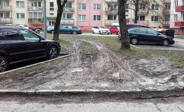 Mestská polícia upozorňuje vodičov, aby nejazdili po trávnatých plochách