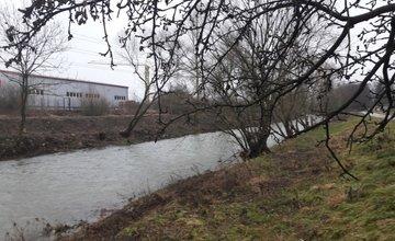 Výrub stromov v okolí Rajčanky - február 2018