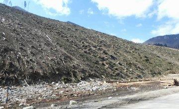 FOTO: Výruby vo Vrátnej doline v dôsledku veternej kalamity