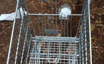 FOTO: Neporiadni návštevníci lesa v Bánovej po sebe zanechávajú neporiadok
