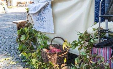 FOTO: Žilinský kapustný deň na Mariánskom námestí v Žiline
