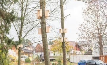 FOTO: V Parku Ľudovíta Štúra na Bôriku pribudli vtáčie búdky