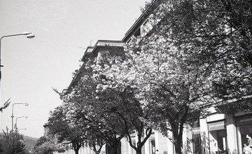 Historické fotografie mesta - 46.časť