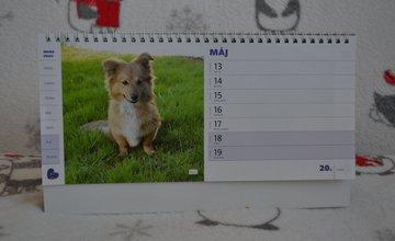 Žilinský útulok kalendáre 2019