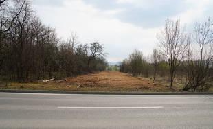 FOTO: Za sídliskom Solinky došlo k výrubu stromov a kríkov