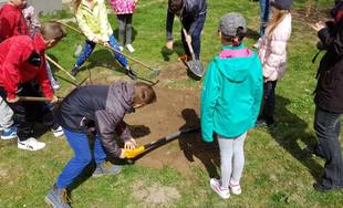 Zážitkové sadenie stromov v Predmieri 2019