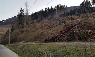 FOTO: Smutný pohľad na Vrátnu dolinu, namiesto lesov už len prázdne kopce