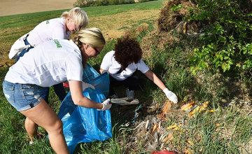 Čistenie lesoparku dobrovoľníkmi zo skupiny SSE Holding