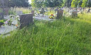 FOTO: Obyvatelia Bytčice sa na cintorínoch brodia vo vysokej tráve, ktorá sa dlhodobo nekosí