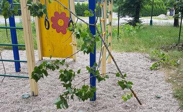Detské ihrisko a park v mestskej časti Rosinky
