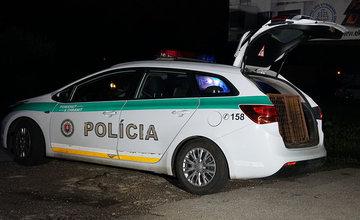 Na Bánovskej ceste v Žiline zaútočil diviak na ženu