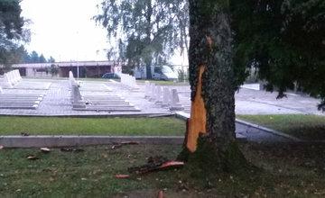 FOTO: Na vojenskom cintoríne na Bôriku udrel blesk do stromu, kôru rozmetalo po okolí