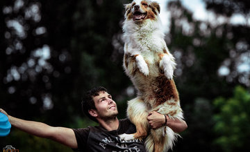 Vicemajstri sveta v DogFrisbee Patrik Szőcs a jeho austrálsky ovčiak Darty