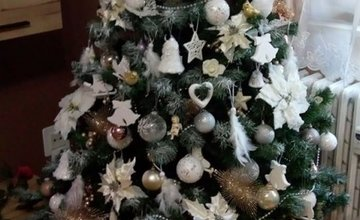FOTO: Galéria vianočných stromčekov zo Žiliny od našich čitateľov